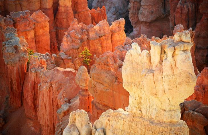 Hoodoos, Bryce Canyon, Utah, 2006.
