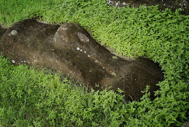 Fallen Moai, Easter Island, 2007.