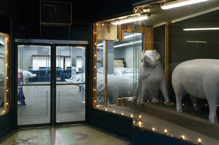 Fiberglass pigs in a downtown storefront, Seattle, Washington. December 2006.