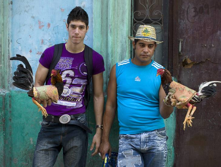 Cockfighters, Calle Industria, Centro, Havana.